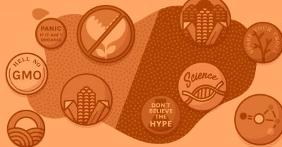 gmo questions and answers